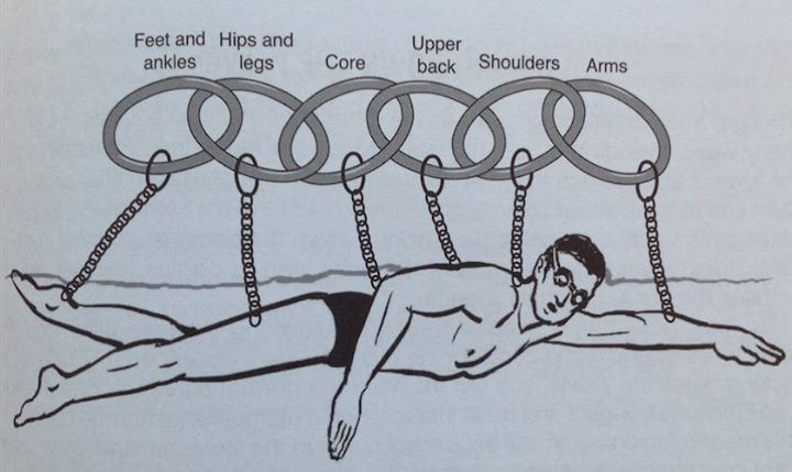 KCP Introduction (Kinetic Chain Pattern)