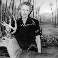 Fannye Cook Mississippis Pioneering Conservationist