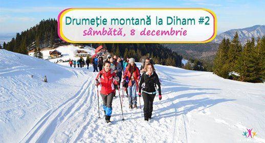 Drumeie montana la Diham 2