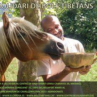 Concert solidari amb el Santuari de cavalls Winston (Matar)