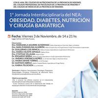 1 Jornada del NEA Obesidad Diabetes Nutricin y C.B