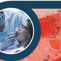 5 Congresso Istituto Stomatologico Toscano