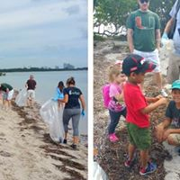Biscayne Beach Cleanup and Potluck Picnic