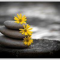 Meditation and Mindful living with Nici