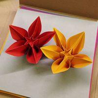 Origami - laboratorio pomeridiano - in programmazione