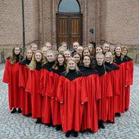Ung Allehelgenskonsert i Bragernes kirke.