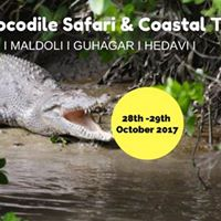 Crocodile Safari &amp Coastal Trail