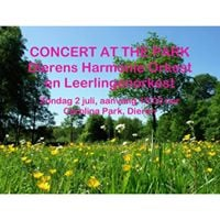Concert at the Park