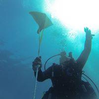 Advance Adventure Dive