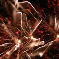 Fireworks at Hampton Park Carols
