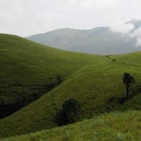 Trekking program to Kodachadri