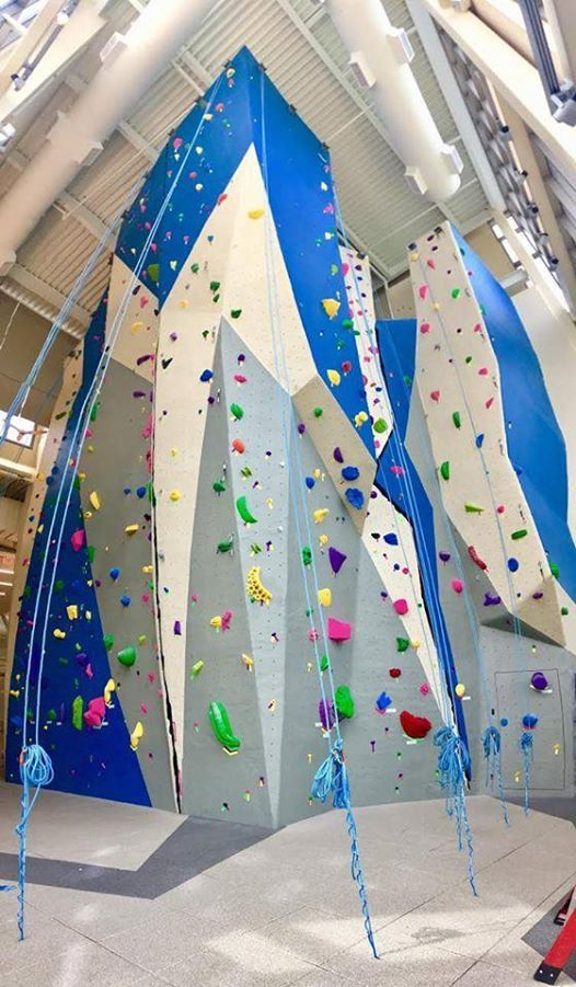 Amga Climbing Wall Instructor Cwi Certification Course At Penn