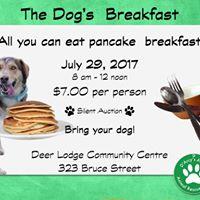 Dogs Breakfast 2017