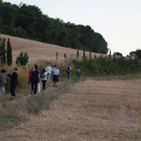 Gli Etruschi nella campagna e sui poggi di Bibbona