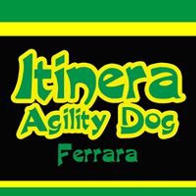 Itinera Agility Dog