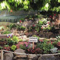 6th Annual Turlock Garden Tour
