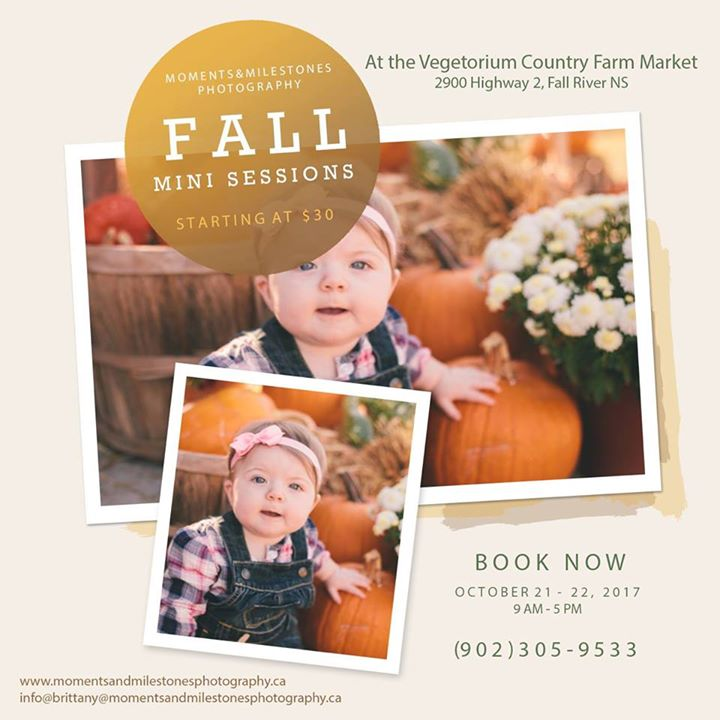 Fall Family Sessions at the Vegetorium Country Farm Market