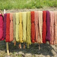 SOLD OUT - Natural Dyes from Your Garden