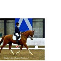 AILSA Gilchrist Flatwork Lessons