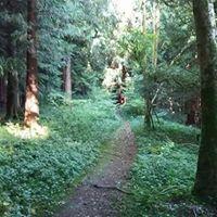 Andover Trail Halffull Marathon 2017