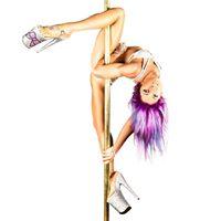 Workshops with Miss Pole Dance Australia - Amy Hazel