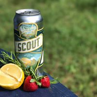 Scout Series Can Release - Rose Gose with Strawberry &amp Lemon
