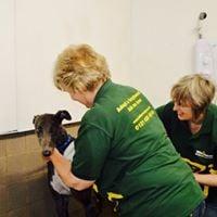 OPEN DAY Greyhound Trust Hall Green &amp Broadmarsh Kennels