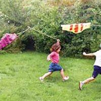 Make a Carp Kite Workshop