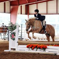10-22-17 Hidden Haven Horse Show