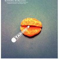 Tangerines (indie-rock UK)