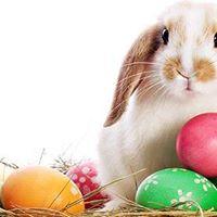 FREE EVENT Easter Egg Hunt