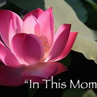 Mindful Meditation Classes - &quotIn This Moment&quot