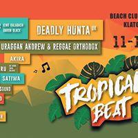 Tropical Beat 2017  music open air festival