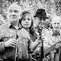 FiddleBop at The Walnut Tree Blisworth