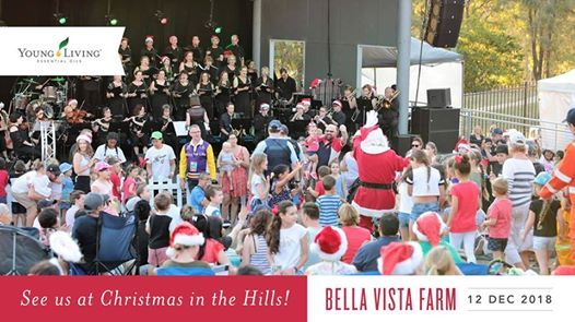 YL at Christmas in The Hills