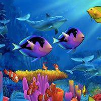 Eindfeest Under the sea