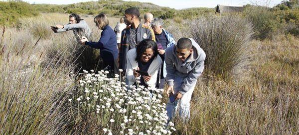 Photo walk at Cape Flats Nature Reserve UWC
