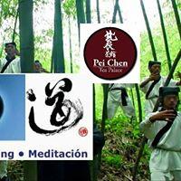 Prctica de Chi Kung - Zhan Zhuang - Contemplacin