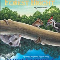 Forest Bright Forest Night 5-7 yo PM Session