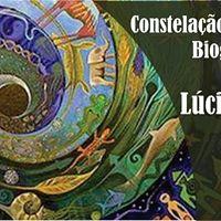 Constelao Familiar Biogrfica