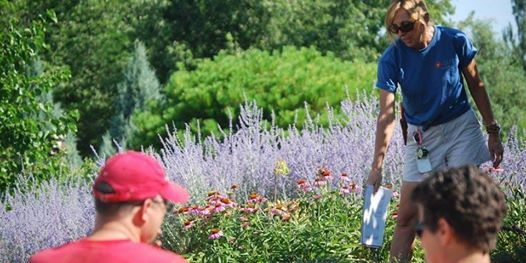 Waterwise Perennials Tour at Conservation Garden Park, West Jordan