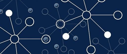 Blockchain Technology Myths and Diversity