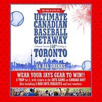 Beercades Ultimate Canadian Baseball Getaway