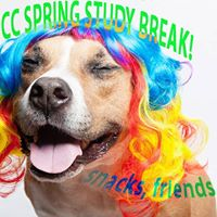 Spring Study Break  Dogs on Call