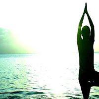 Psychological Bodywork Focus Mechanics of Med