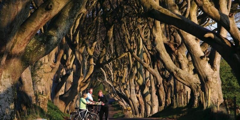 Game of Thrones Tour from Dublin Including Giants Causeway ( Avail Oct19 - Dec19)