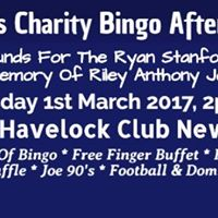 Alpers Charity Bingo Afternoon at The Havelock  1st March 2017