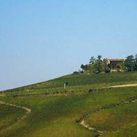 Weinprobe mit Guiseppe von everydaywine