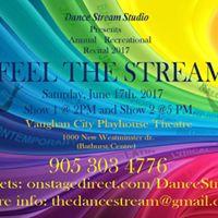 Feel the Stream Annual Recreational Recital 2017 )