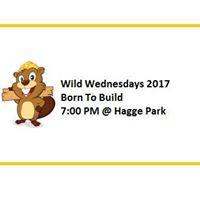 Wild Wednesday-Bees &amp Wasps